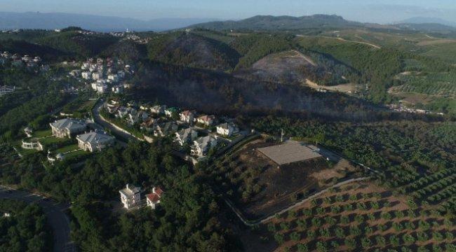 Bursa'da 20 Hektarlık Alan Kül Oldu Soğutma Çalışmaları Devam Ediyor