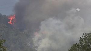 Mudanya'daki Orman Yangını Kontrol Altına Alındı (2)