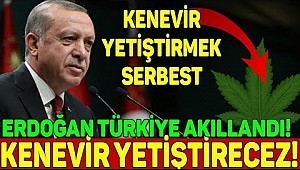 Erdoğan, kenevir üretimine başlıyoruz