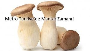 Metro Türkiye'de Mantar Zamanı!