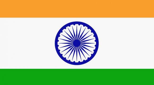 Hindistan'da ensefalit nedeniyle çocuk ölümleri meydana geldi