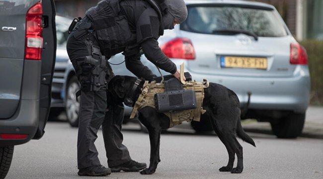 Hollanda'da ayakkabıları ve köpeği ile camiye baskın yapan polise tepki