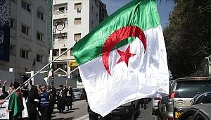 Cezayir'de seçimin galibi Tebbun