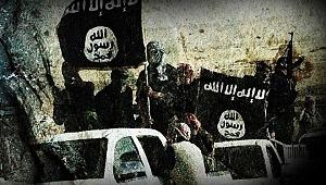 2019 IŞİD Terör Örgütünün Çöküş Yılı Oldu