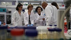 Kanserle Mücadelede Metastazdan Sorumlu Proteinler Yakalandı