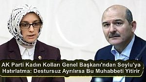 AK Parti Kadın Kolları Genel Başkanı ne yapmaya çalışıyor