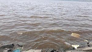 Küçükçekmece Gölü kahverengiye büründü