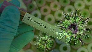 Portekiz'de Coronavirus vaka sayısı 33 bin 261'e yükseldi