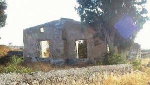 Yunanistan, onlarca camiyi kiliseye çevirdi