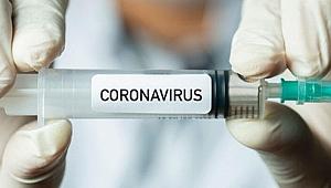 30 Kasım'a kadar sonuç alınması bekleniyor! Aşı denemeleri başladı