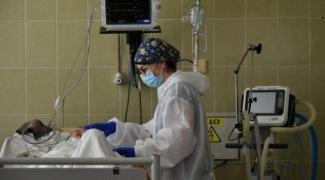 Dünya genelinde corona virüste vaka sayısı 11,5 milyonu geçti