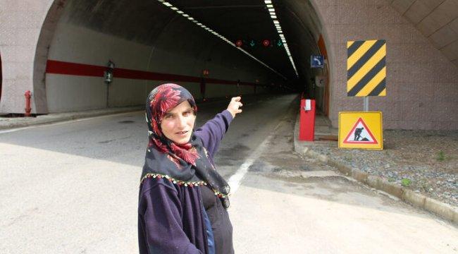 Tünelde otomobilin çarptığı ineğin sahibine 1800 TL ceza