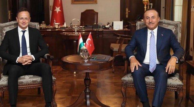 Türk Konseyi'nin gözlemci üyesi Macaristan, Türk dünyası ile güçlü bağlar kuruyor