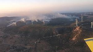 Güney Kıbrıs'ta ormanlık alanda yangın