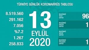 13 Eylül koronavirüs tablosu! Vaka, ölü sayısı