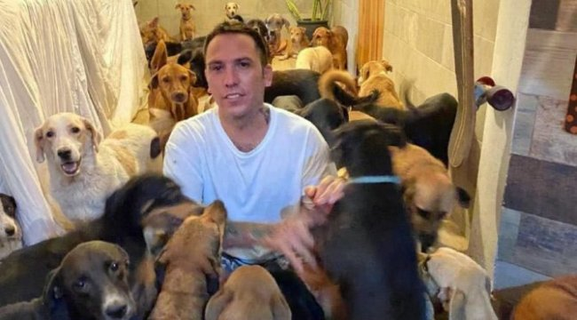 300 köpeği evine aldı!