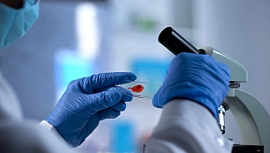 Hangi kan grubunun koronavirüse yakalanma riski daha az?