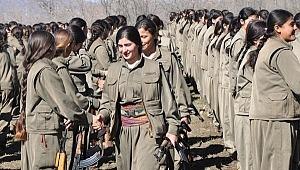 Zozan kod adlı M.A. HDP'nin yaptığı hainliktir
