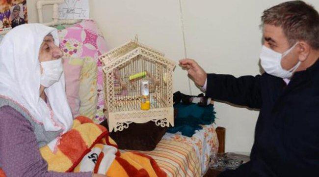 Belediye başkanı, Sevgi ninenin muhabbet kuşu isteğini yerine getirdi
