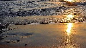 ABD'de sahiller kapatıldı! Suya temas etmeyin