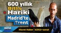 600 Yıllık Bitlis Hariki Madrit'te Trent