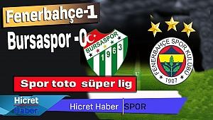 Skor Fenerbahçe 1 Bursa 0