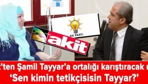 Sen kimin tetikçisisin Şamil Tayyar?