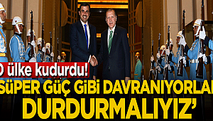 Türkiye 'Süper güç gibi davranıyor, durdurmalıyız'