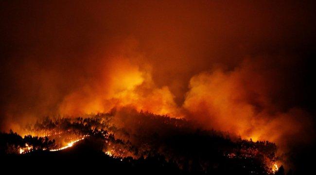 Afrin'de orman yangını