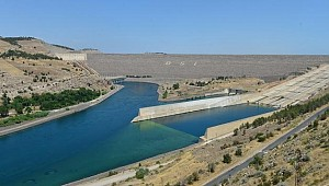 Atatürk Barajı'nda alabalık üretim atağı