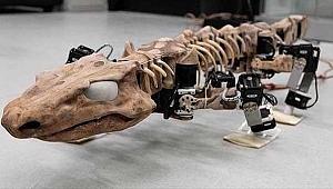 300 milyon yaşındaki fosil, robot olarak 'dirildi'