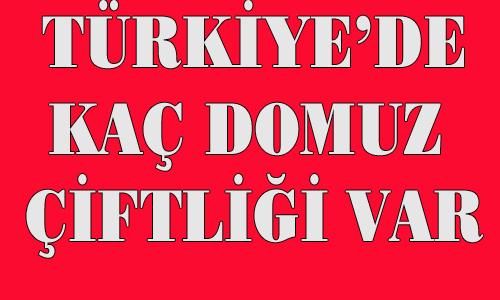 Türkiye'de Domuz Çiftlikleri, Kesimhaneleri ve Kullanma Yerleri