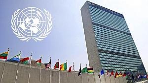 BM Irkçılık Özel Raportörü: İslamofobik bir terör saldırısı